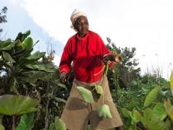 Greenpeace_Kenya_day4_0065.jpg